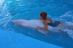 говорят дельфины